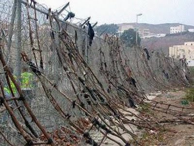 La culture des murs Mimoun12