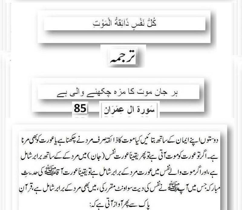 دیت کی جعلی فتوی فیکٹری پر منہاج القرآن کی فتح کا جھنڈا - Page 2 43m1010