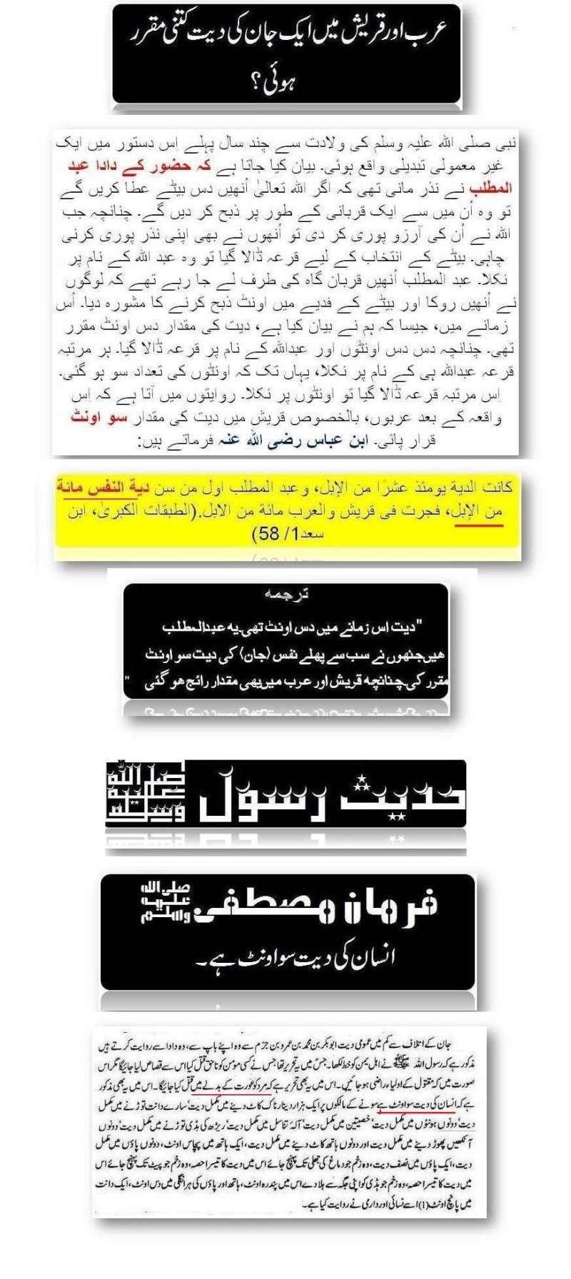 Diyat HADESS 54410