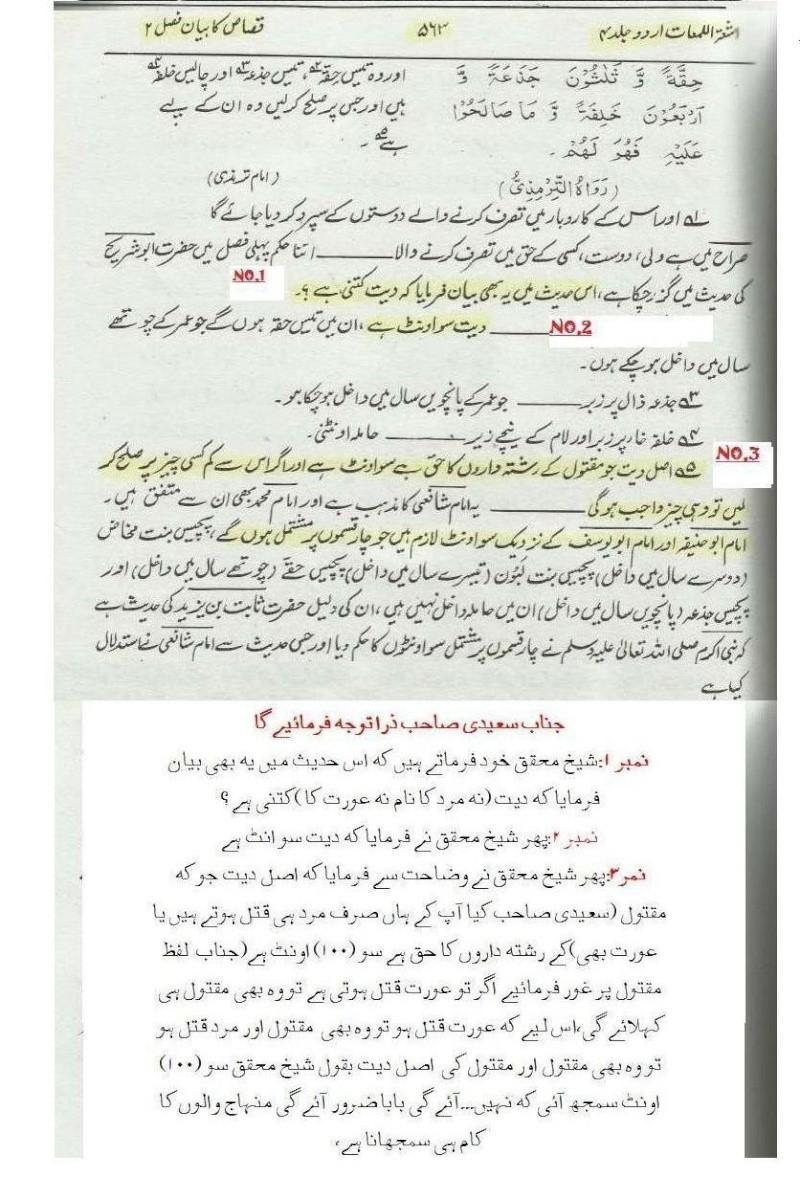 دیت کی جعلی فتوی فیکٹری پر منہاج القرآن کی فتح کا جھنڈا - Page 2 Post_216
