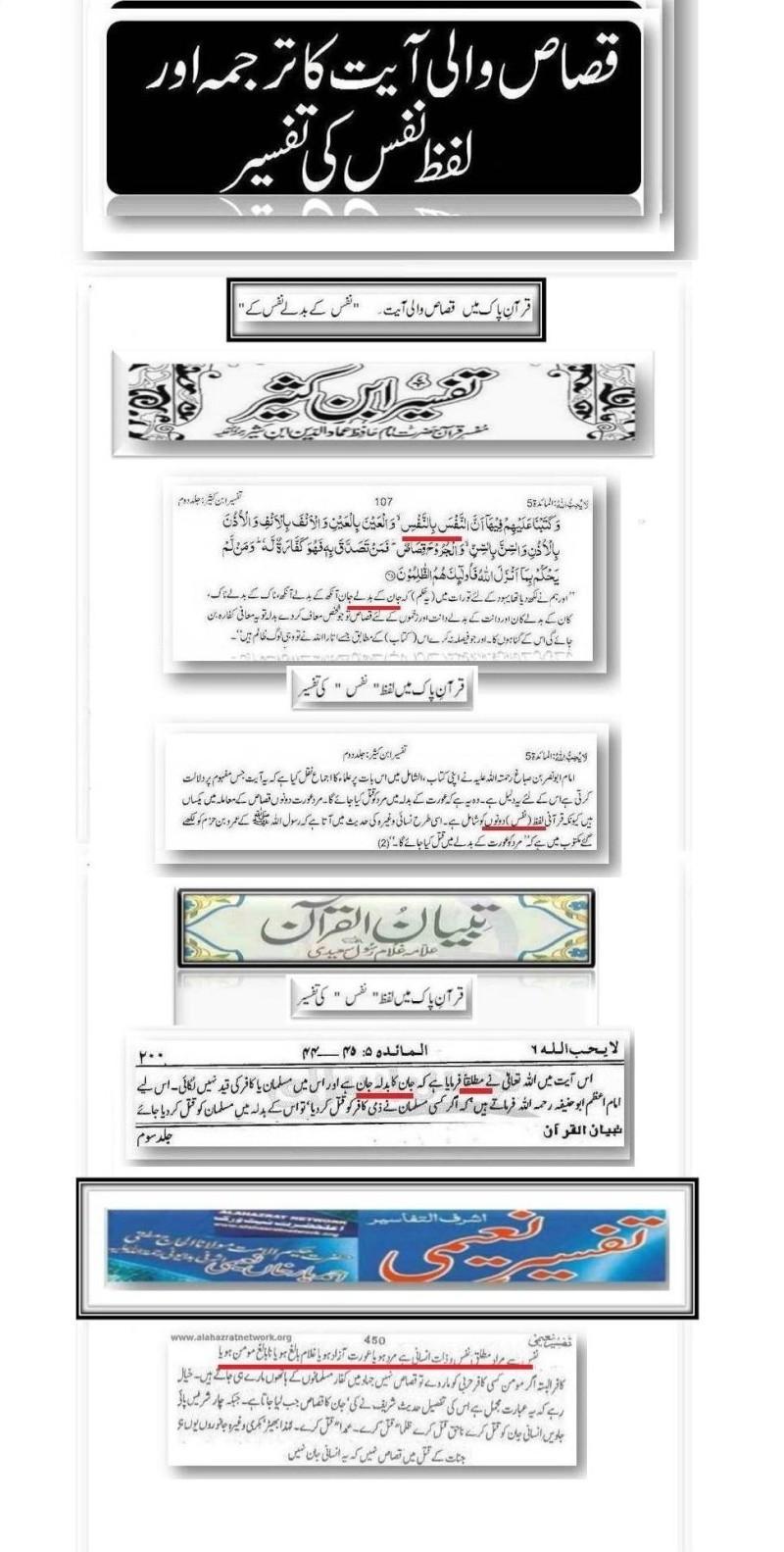 دیت کی جعلی فتوی فیکٹری پر منہاج القرآن کی فتح کا جھنڈا - Page 2 Post_313