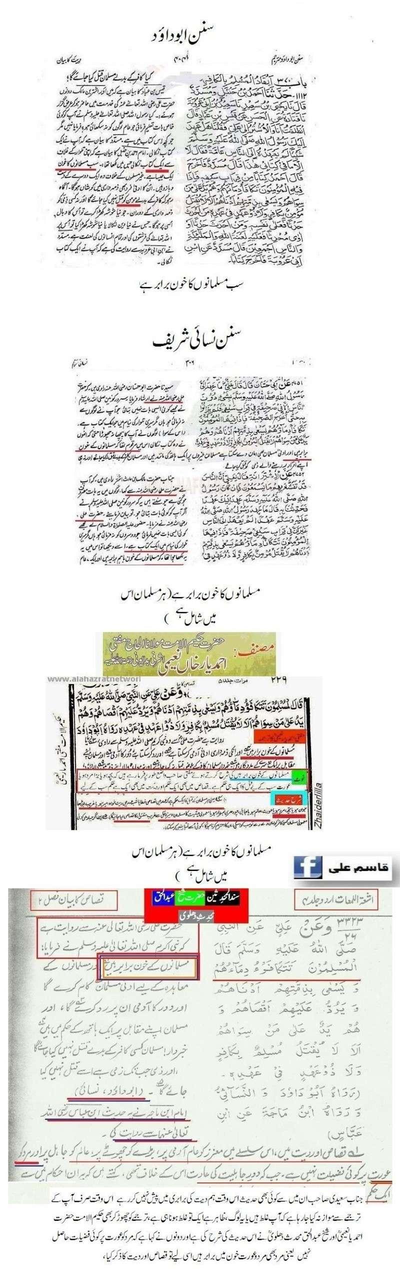 دیت کی جعلی فتوی فیکٹری پر منہاج القرآن کی فتح کا جھنڈا - Page 2 Qasim_23