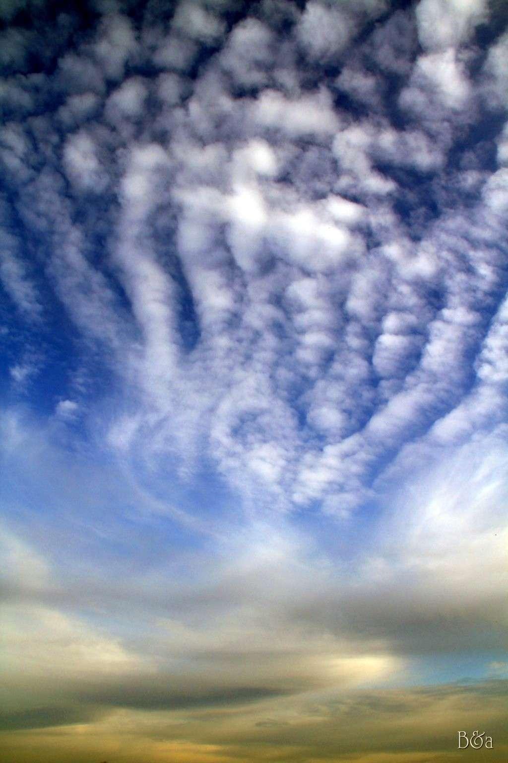 Concours du mois de mars 2011. Thème : Ciel de mars Photo_12