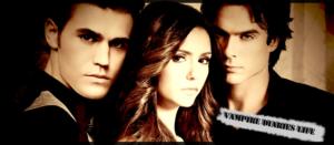 The Vampire Diaries I_logo10