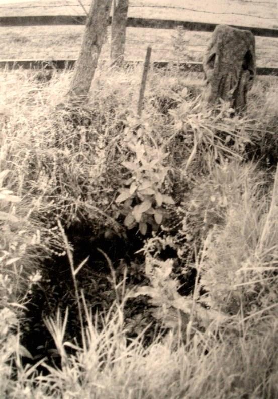 PEG O' NELL'S WELL or ST MARGARET'S WELL, near Waddington P6240210