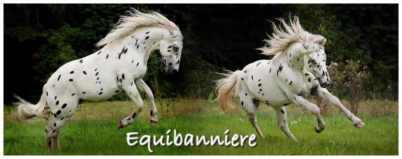 Equibanniere