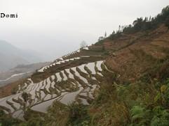 La Chine sac au dos (11) : Yunnan, de Kunming au Xishuangbanna par Jianshui (建水) et les rizières de Yuan Yang (元阳) 7_yuan10