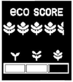 [CONSO] Rapport entre les fleurs et la Conso ? Eco_co10