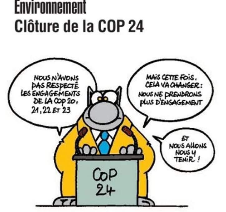 Ce que dit la liste des participants à la COP 24 48377910