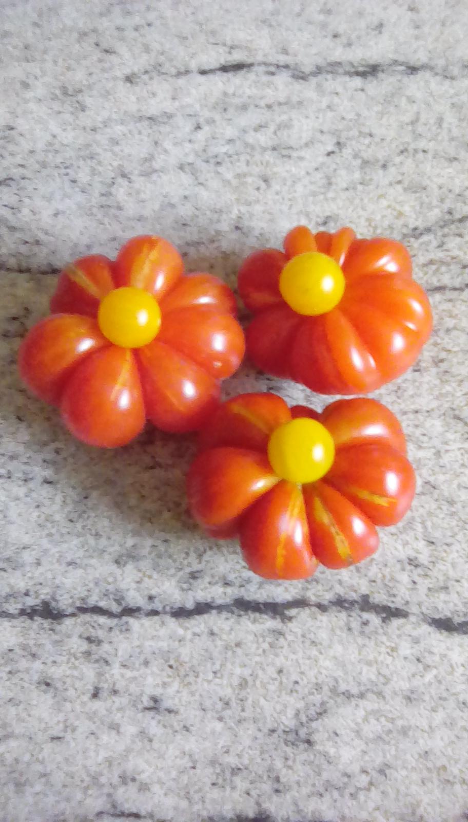 Unser erstes Gemüsebeet - Seite 21 Img_2081