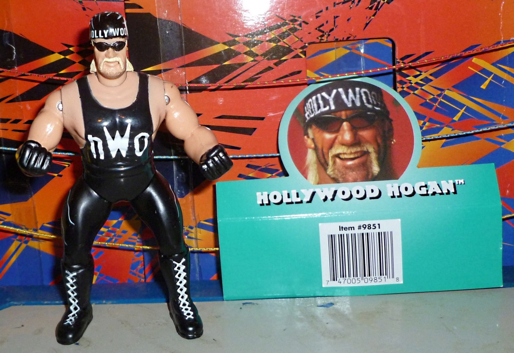 My Vintage Wrestling Collection: WCW OSTM Cage Update! - Page 2 _holly10