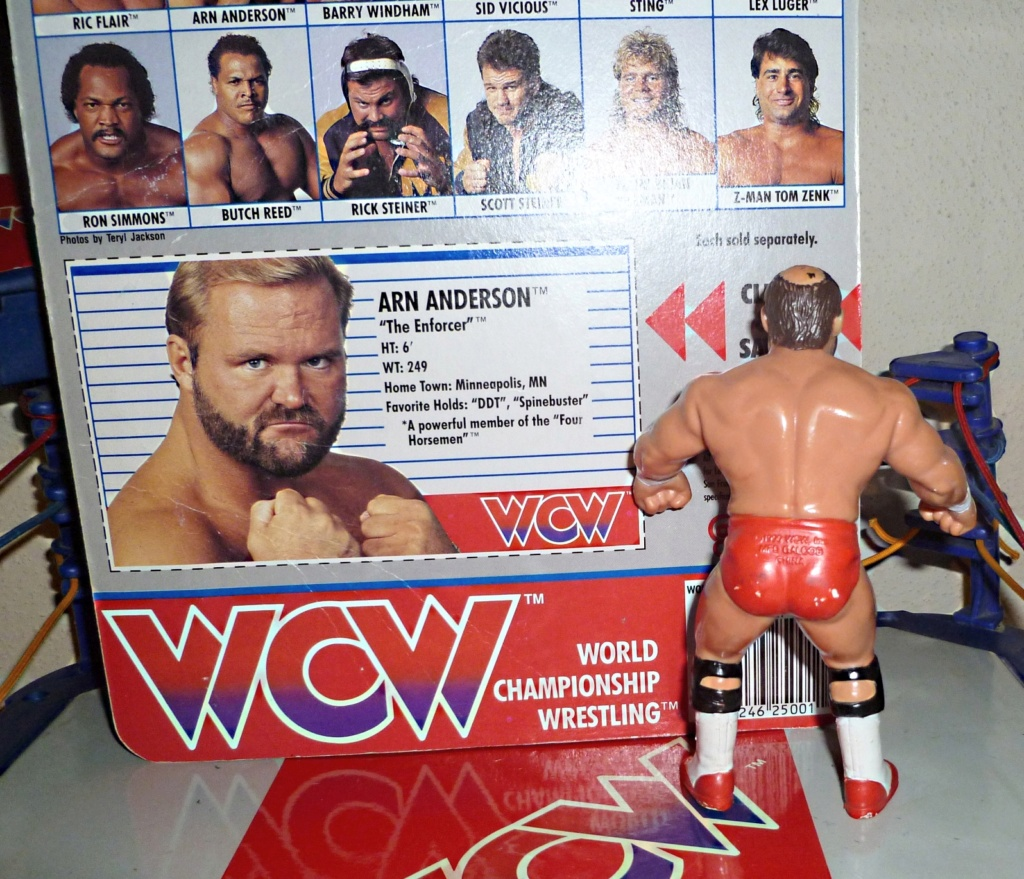 My Vintage Wrestling Collection: WCW OSTM Cage Update! Arn_an10