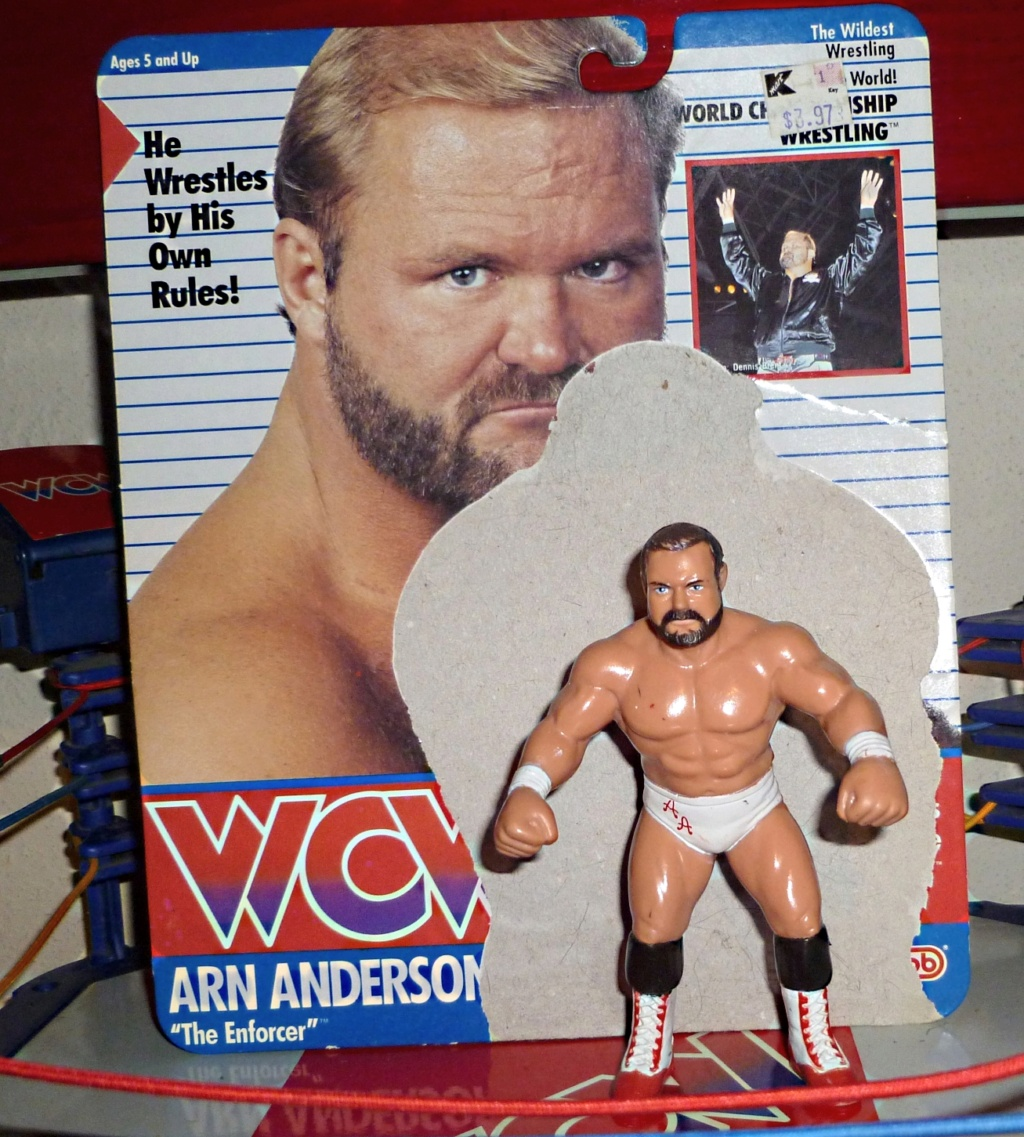 My Vintage Wrestling Collection: WCW OSTM Cage Update! Arn_an11