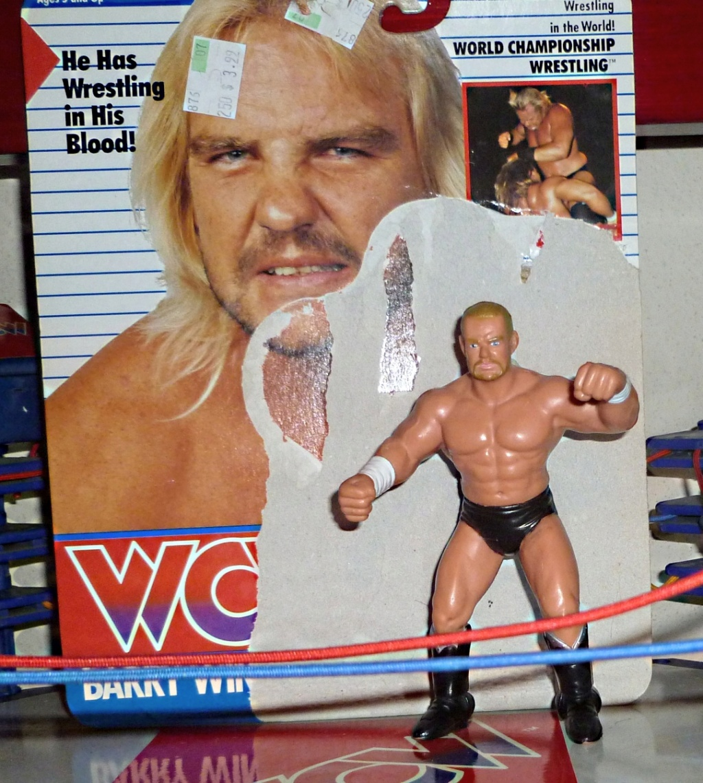 My Vintage Wrestling Collection: WCW OSTM Cage Update! Barry_10