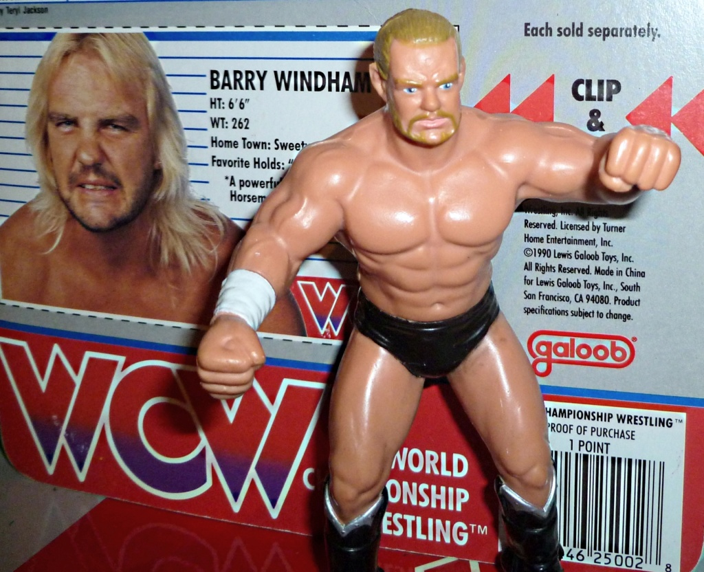 My Vintage Wrestling Collection: WCW OSTM Cage Update! Barry_12