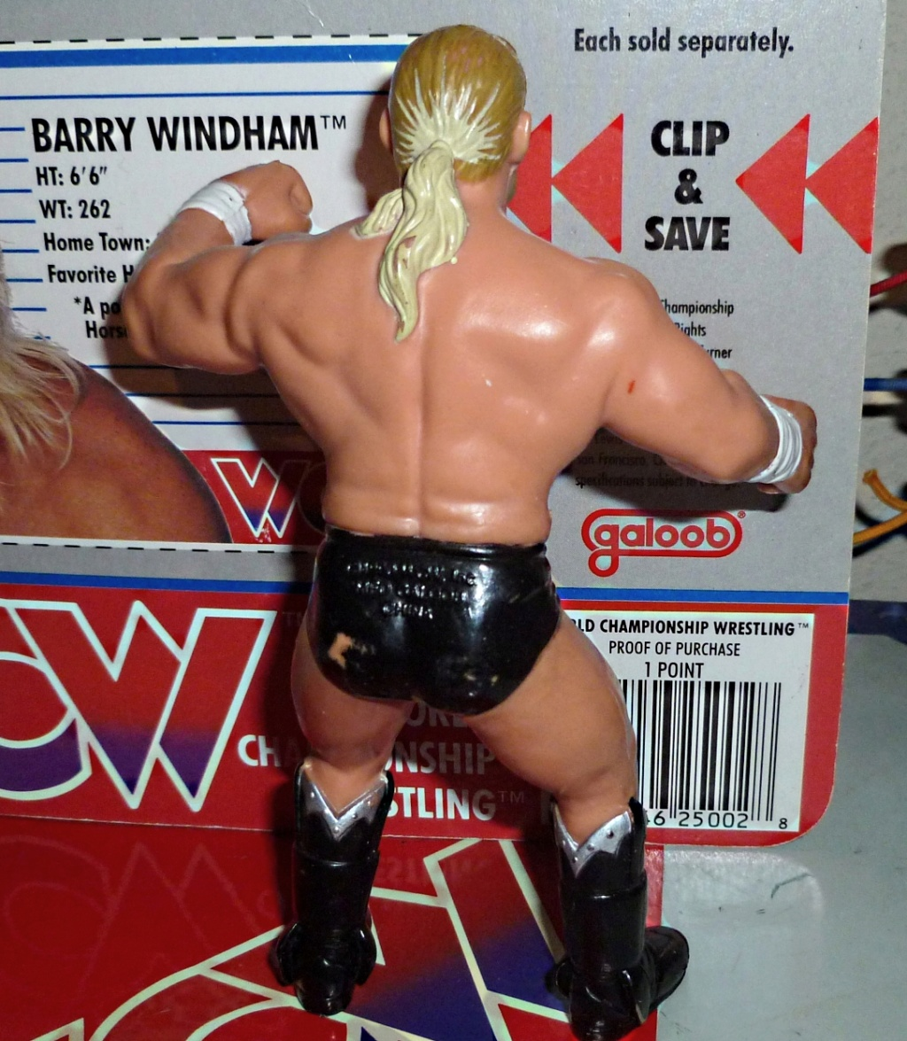 My Vintage Wrestling Collection: WCW OSTM Cage Update! Barry_13