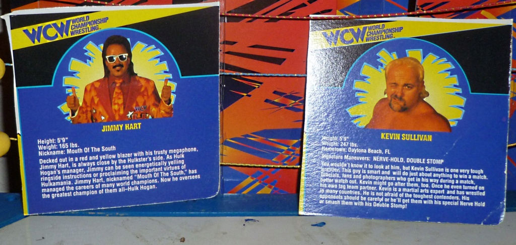 My Vintage Wrestling Collection: WCW OSTM Cage Update! - Page 2 Bio_ca10