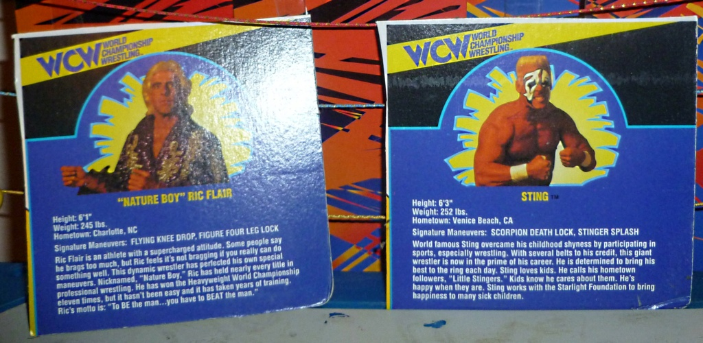 My Vintage Wrestling Collection: WCW OSTM Cage Update! - Page 2 Bio_ca11