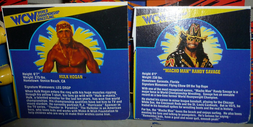 My Vintage Wrestling Collection: WCW OSTM Cage Update! - Page 2 Bio_ca12