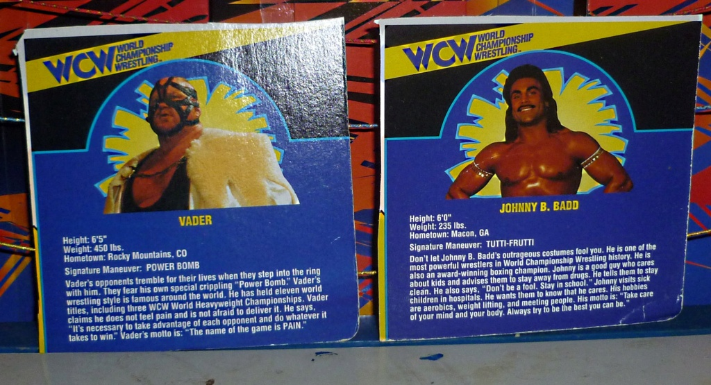 My Vintage Wrestling Collection: WCW OSTM Cage Update! - Page 2 Bio_ca14