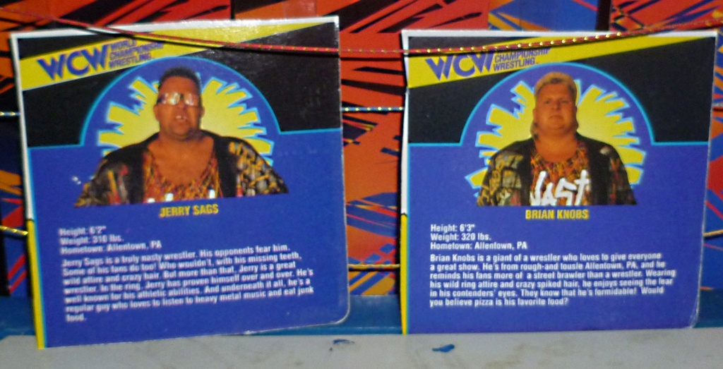 My Vintage Wrestling Collection: WCW OSTM Cage Update! - Page 2 Bio_ca15