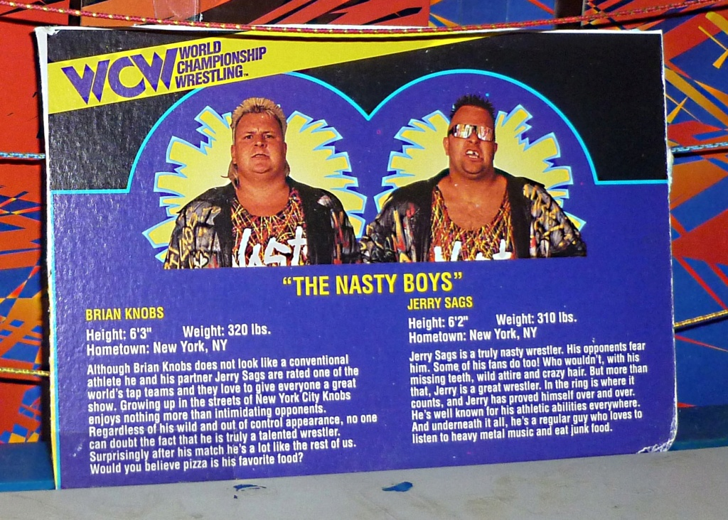 My Vintage Wrestling Collection: WCW OSTM Cage Update! - Page 2 Bio_ca18