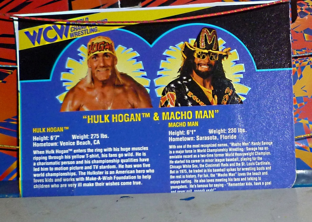 My Vintage Wrestling Collection: WCW OSTM Cage Update! - Page 2 Bio_ca20