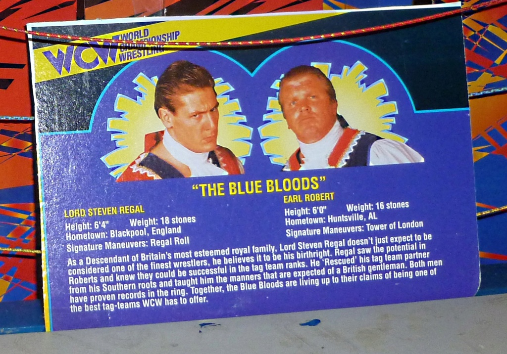 My Vintage Wrestling Collection: WCW OSTM Cage Update! - Page 2 Bio_ca21
