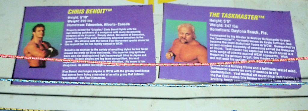 My Vintage Wrestling Collection: WCW OSTM Cage Update! - Page 2 Bio_ca24