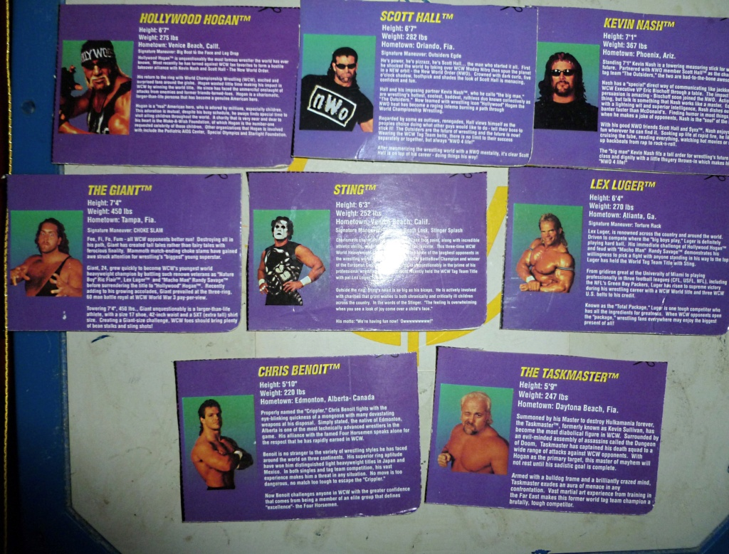 My Vintage Wrestling Collection: WCW OSTM Cage Update! - Page 2 Bio_ca25