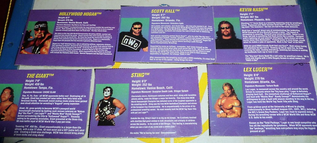 My Vintage Wrestling Collection: WCW OSTM Cage Update! - Page 2 Bio_ca26