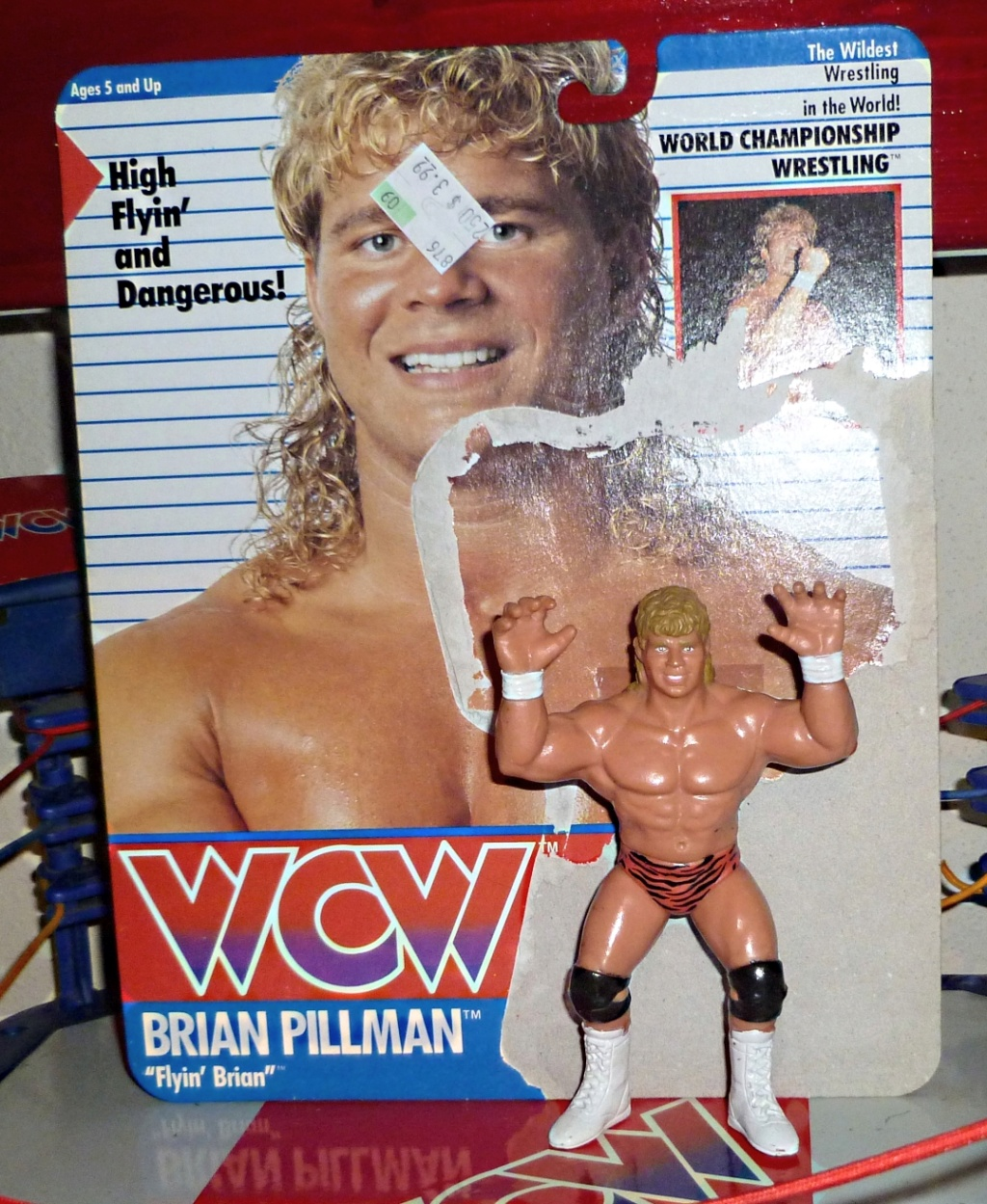 My Vintage Wrestling Collection: WCW OSTM Cage Update! Brian_10