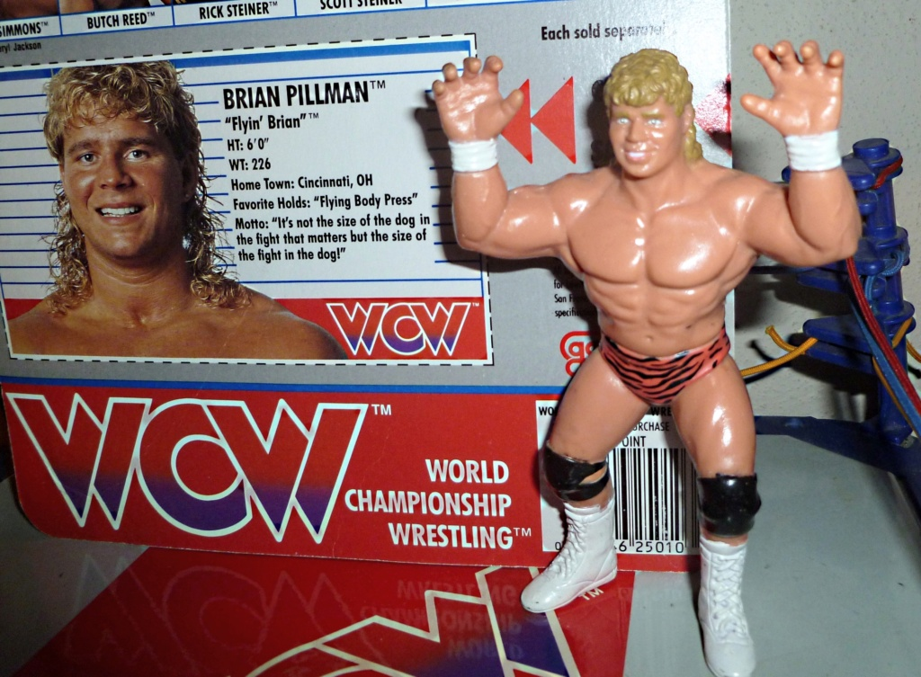 My Vintage Wrestling Collection: WCW OSTM Cage Update! Brian_11