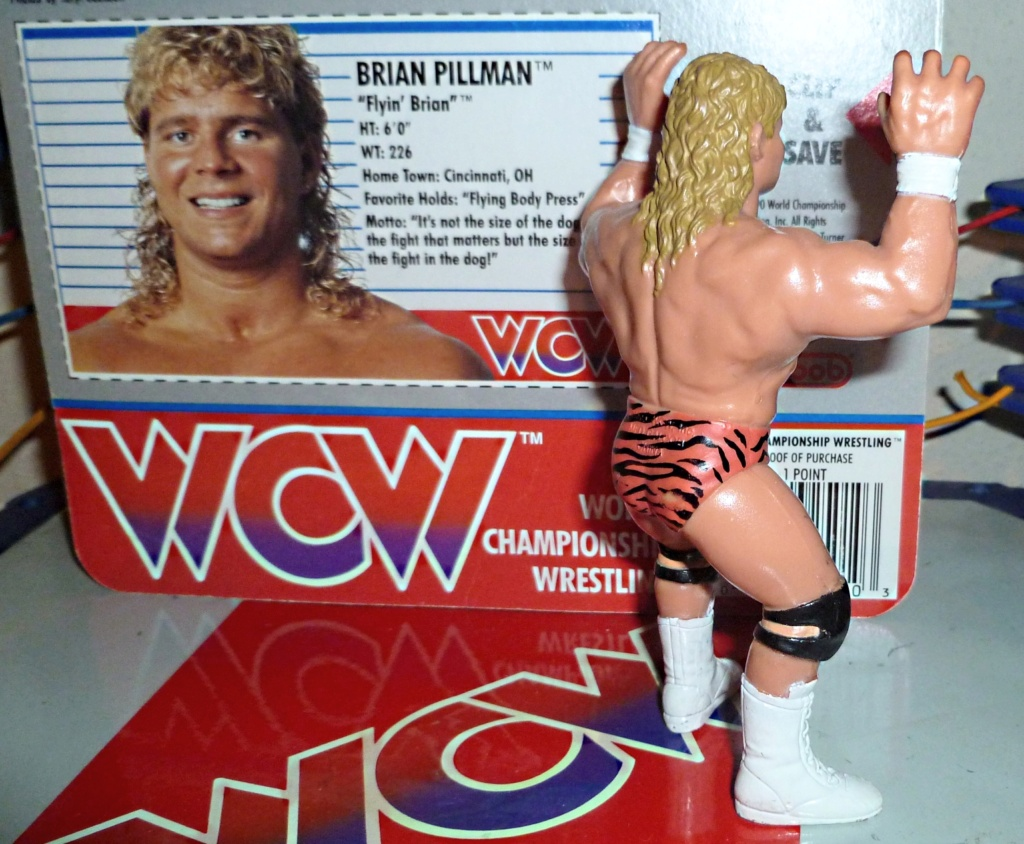 My Vintage Wrestling Collection: WCW OSTM Cage Update! Brian_12