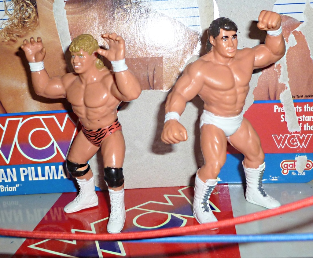 My Vintage Wrestling Collection: WCW OSTM Cage Update! Brian_13