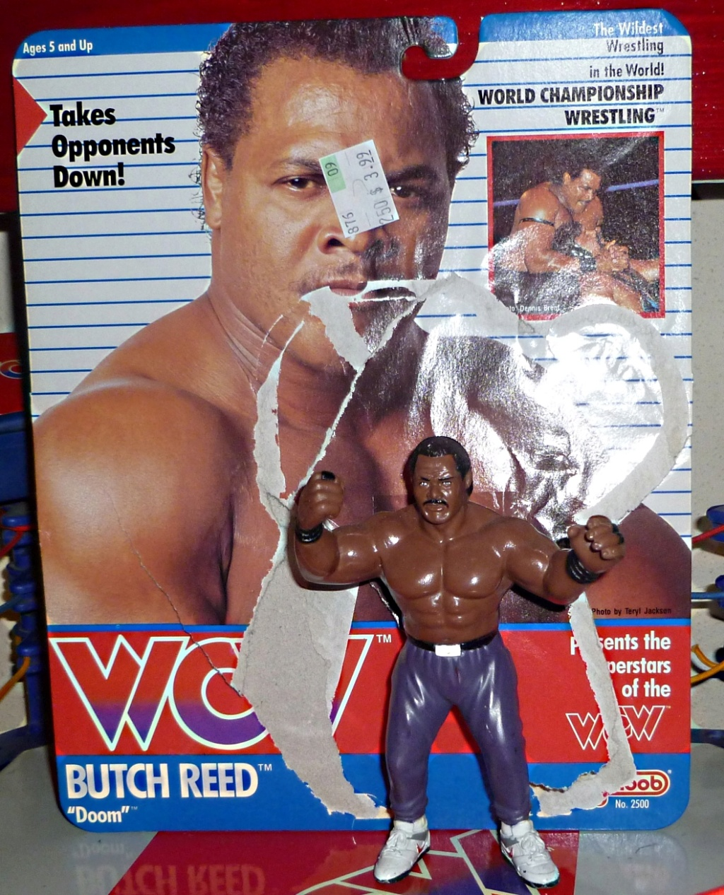 My Vintage Wrestling Collection: WCW OSTM Cage Update! Butch_12