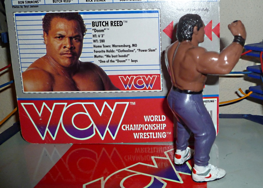 My Vintage Wrestling Collection: WCW OSTM Cage Update! Butch_13