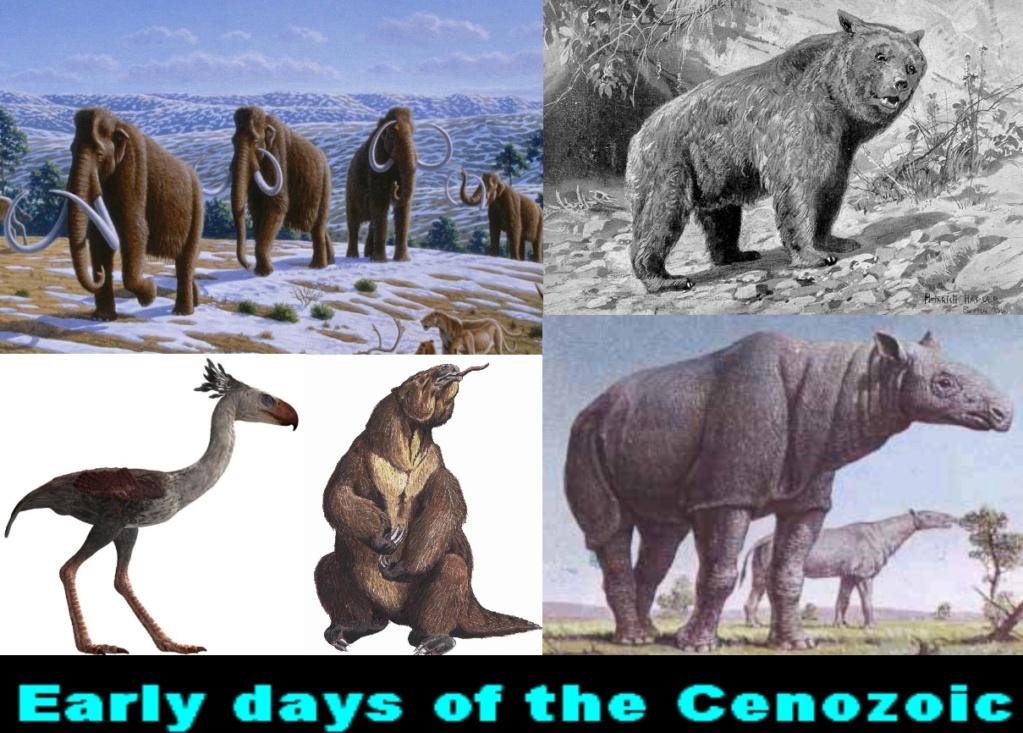 Cryptozoology & Ufology Discussion: My Sasquatch sighting and Me & T-REX Sue! Cenozo10