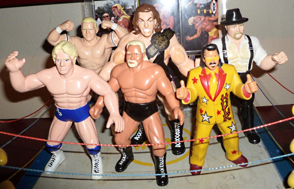 My Vintage Wrestling Collection: WCW OSTM Cage Update! - Page 2 Dod-ta10