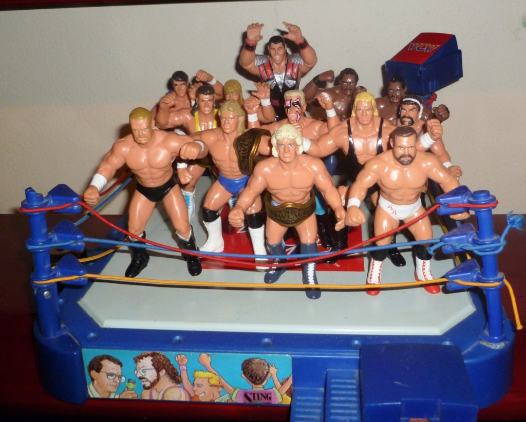 My Vintage Wrestling Collection: WCW OSTM Cage Update! Galoob11