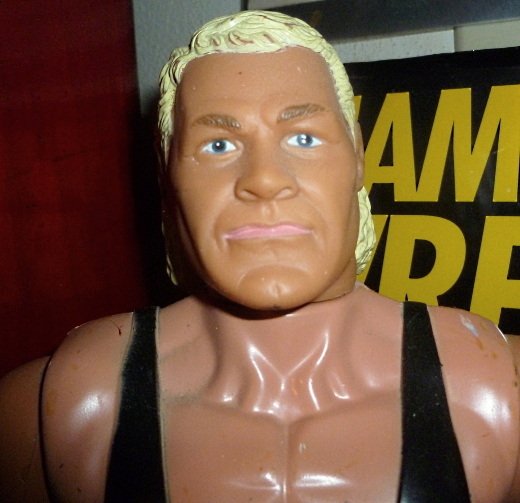 My Vintage Wrestling Collection: WCW OSTM Cage Update! Galoob14