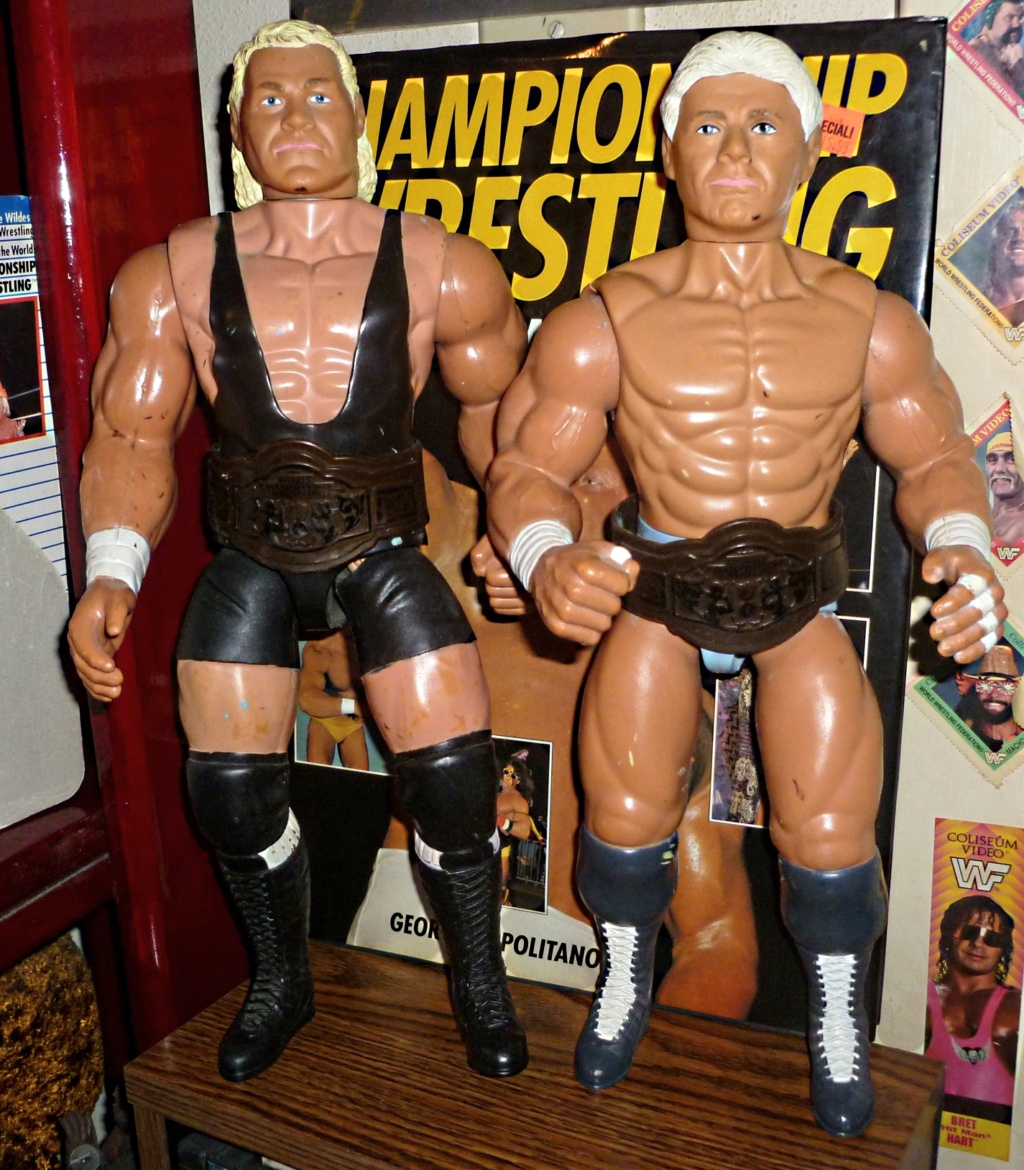 My Vintage Wrestling Collection: WCW OSTM Cage Update! Galoob15