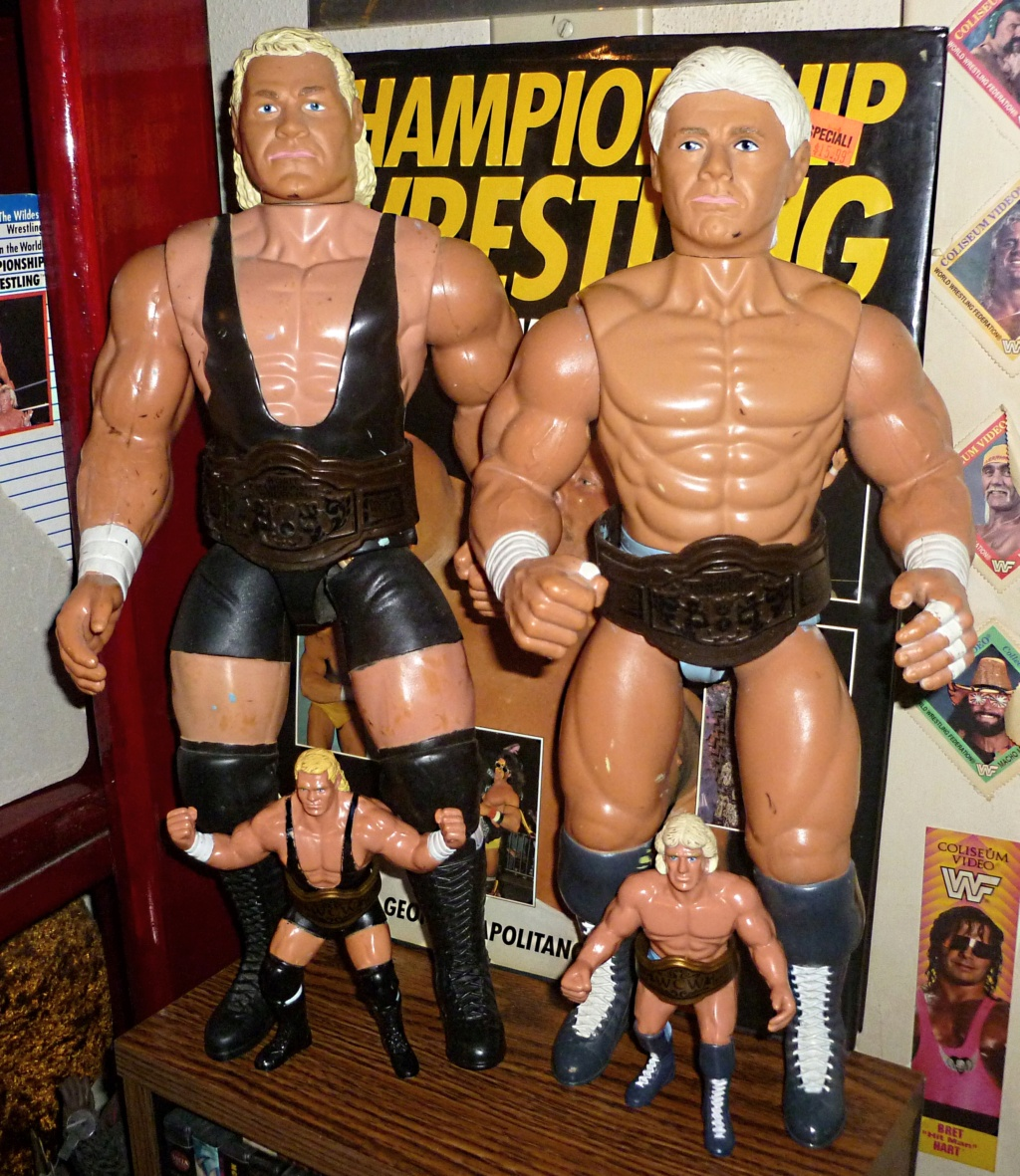 My Vintage Wrestling Collection: WCW OSTM Cage Update! Galoob17