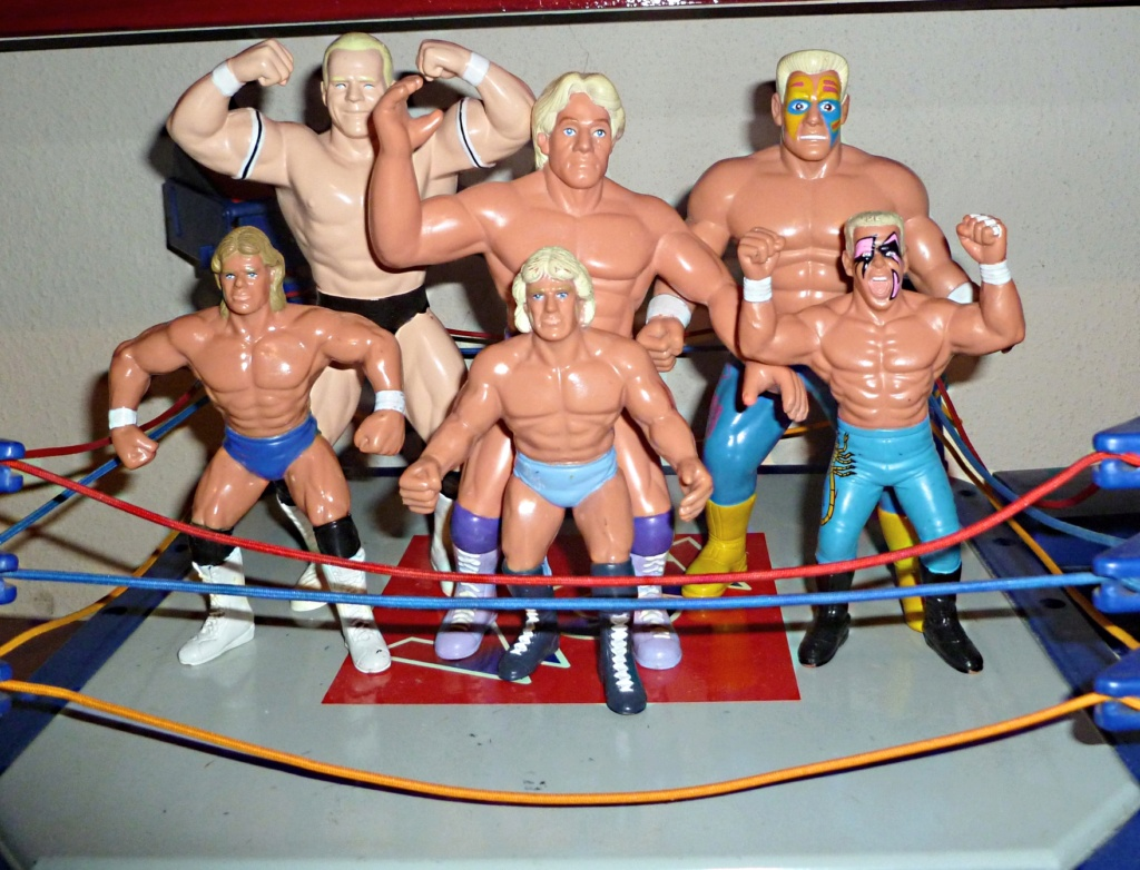 My Vintage Wrestling Collection: WCW OSTM Cage Update! Galoob18