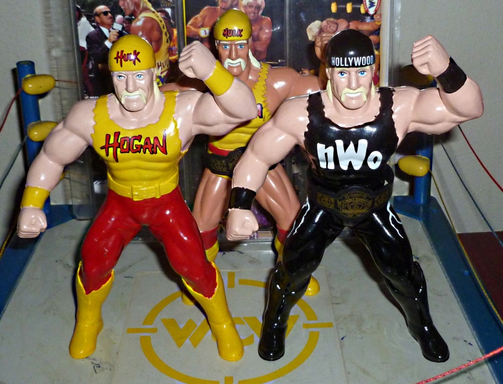 My Vintage Wrestling Collection: WCW OSTM Cage Update! - Page 2 Hogan_10