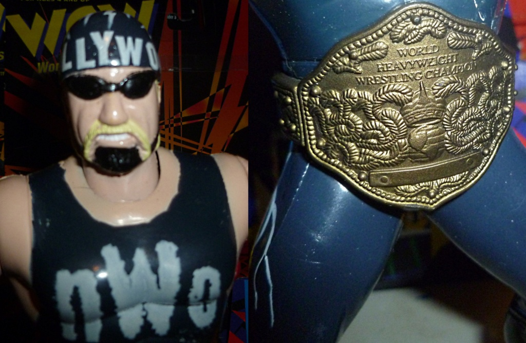 My Vintage Wrestling Collection: WCW OSTM Cage Update! - Page 2 Hollyw10
