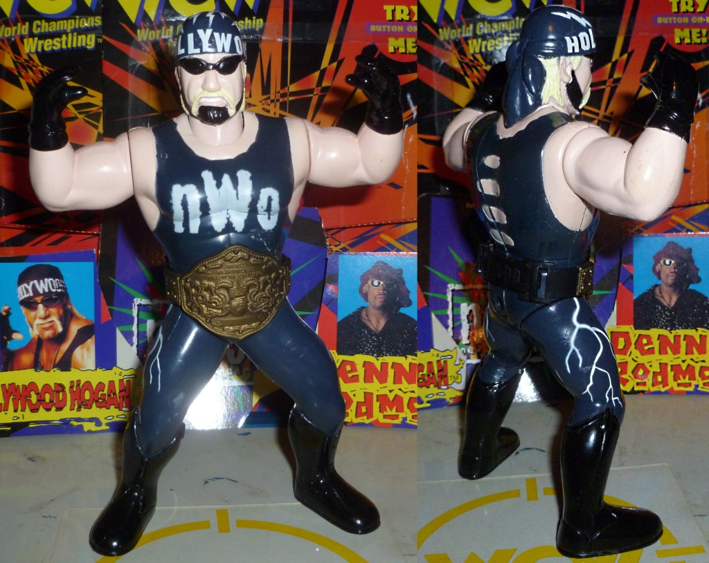 My Vintage Wrestling Collection: WCW OSTM Cage Update! - Page 2 Hollyw11