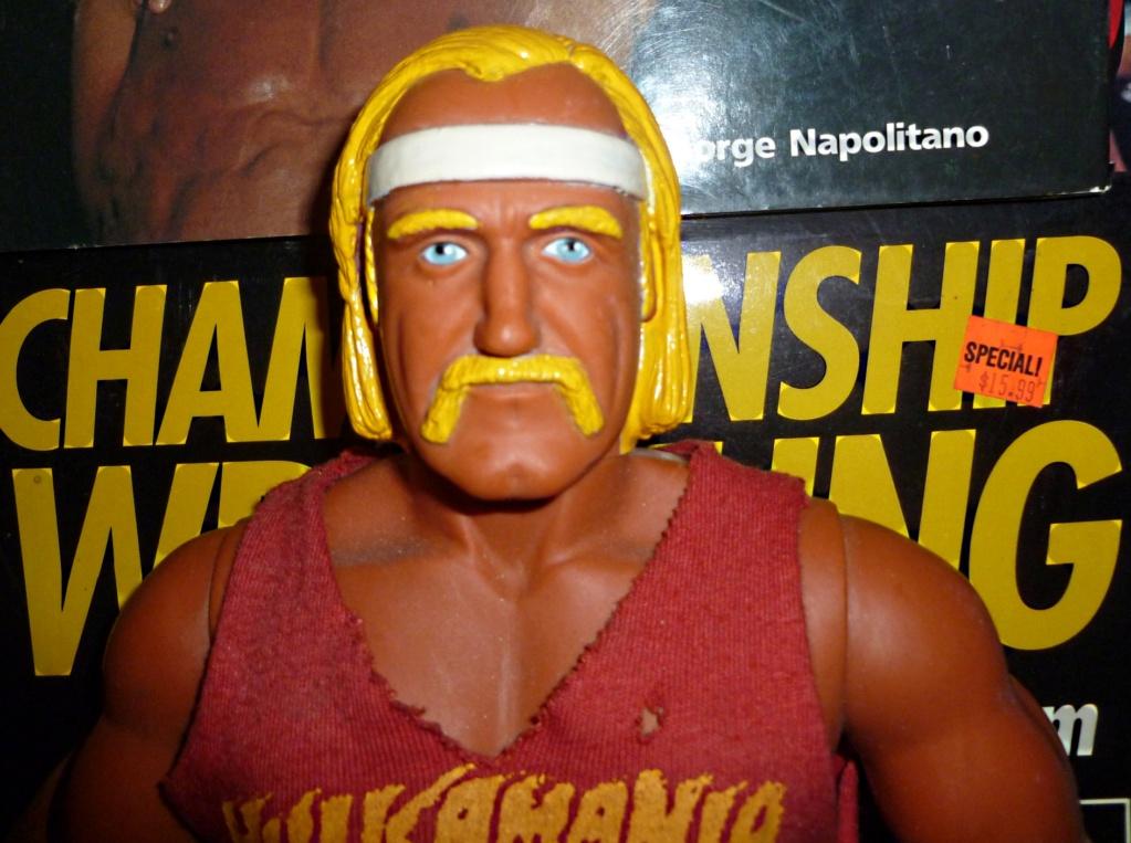 My Vintage Wrestling Collection: WCW OSTM Cage Update! Hulk_h10