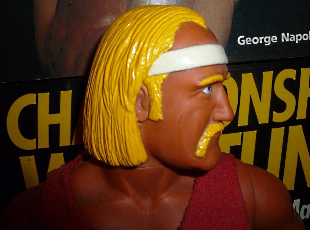 My Vintage Wrestling Collection: WCW OSTM Cage Update! Hulk_h11