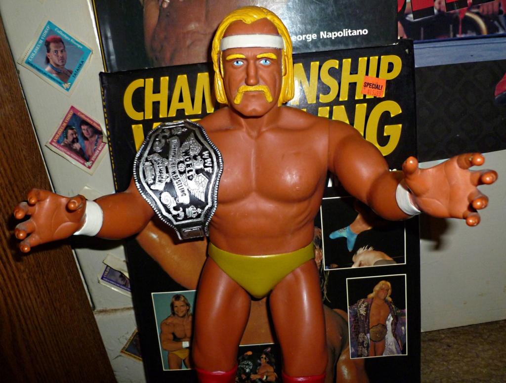 My Vintage Wrestling Collection: WCW OSTM Cage Update! Hulk_h14